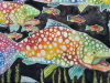 Psychedelic School of Trout