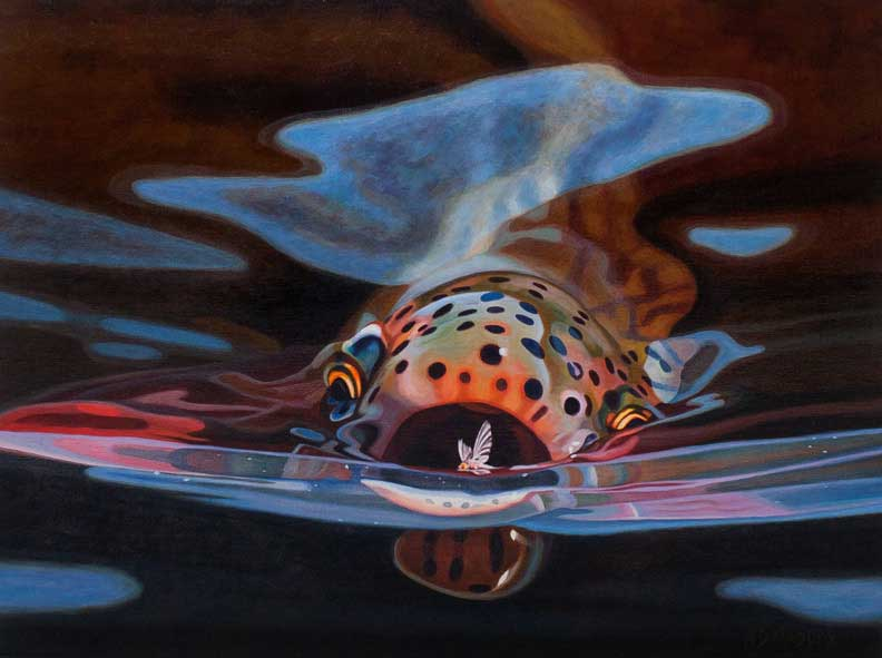Ad maddox midcurrent for Fly fishing art
