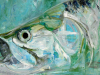Sight the Tarpon_1200Schlaff_midcurrent