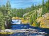 Fly Fishing Lewis Falls, Yellowstone