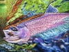 Working the Current - Rainbow Trout