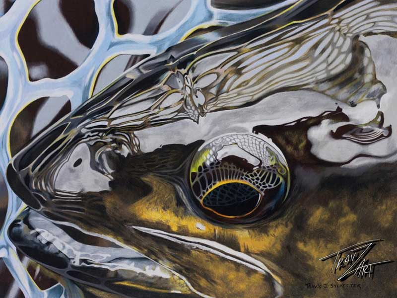 Travis sylvester midcurrent for Fly fishing art