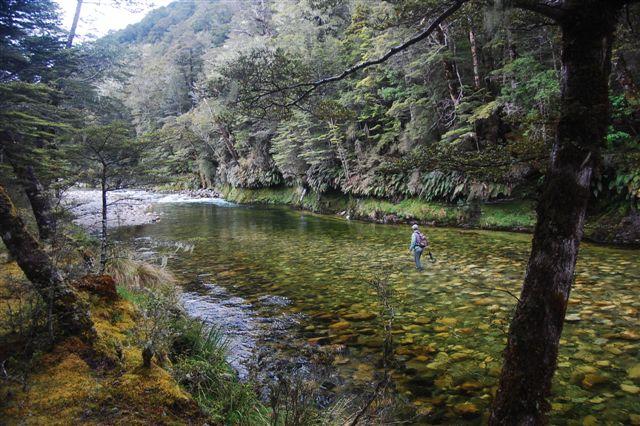 Fishing New Zealand's South Island