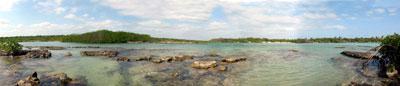 Yucatan Fly Fishing