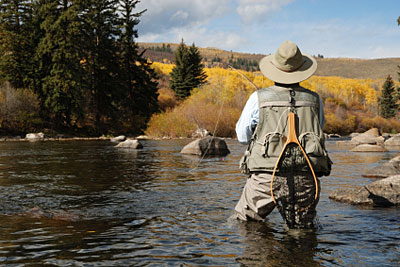 Downstream Drift for Trout