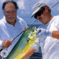 """Saltwater Utility Flies: """"Anywhere, Anytime"""""""