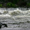 Fishing High Water for Trout