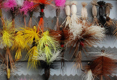 Indicator Flies