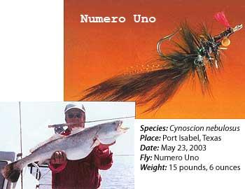 Numero Uno Fly