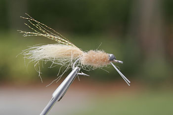 Duane Crab Bonefish Fly