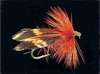Estes Delta Wing Alderfly