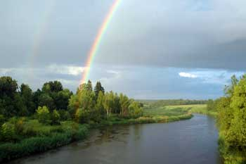 Fishing Rainbow