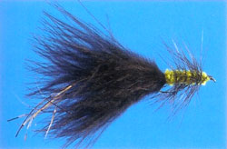 Black Woolly Bugger