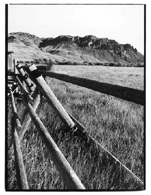 Beaverhead Fence