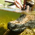 LL Bean River Treads Wading Boots