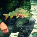 "Fly Fishing Jazz: ""The Rest"""