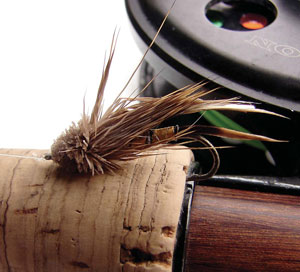 Fly Fishing for Cutthroats
