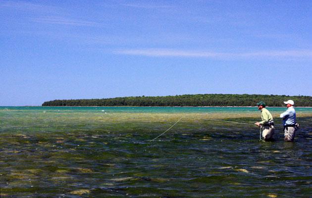 Lake Michigan Carp Fishing