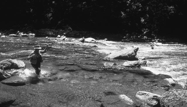Gary Borger Fishing New Zealand