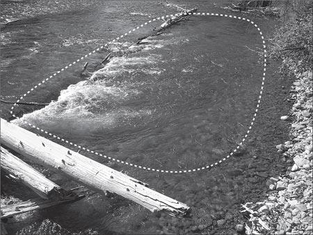 Gary Borger Fishing Scour Pool