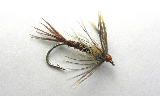 Hendrickson Soft Hackle Fly