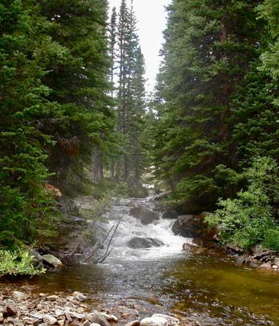 Colorado Small Stream Fishing
