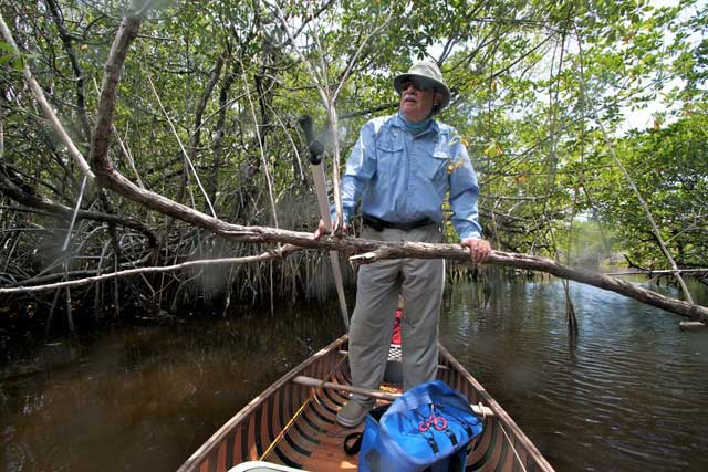Chico Fernandez canoeing the mangroves