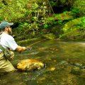 River Rights, North Carolina-Style