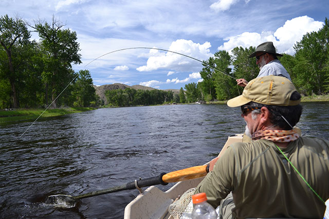 Fly Fishing with Streamers Tips