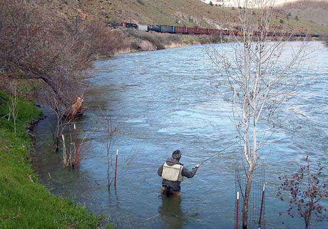 Spring Trout Fishing Tactics