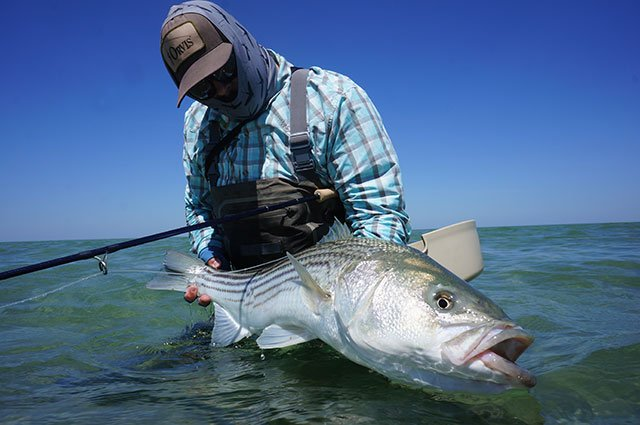 Shawn Combs Fly Fishing