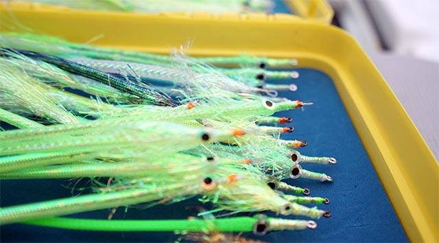 Barracuda Flies