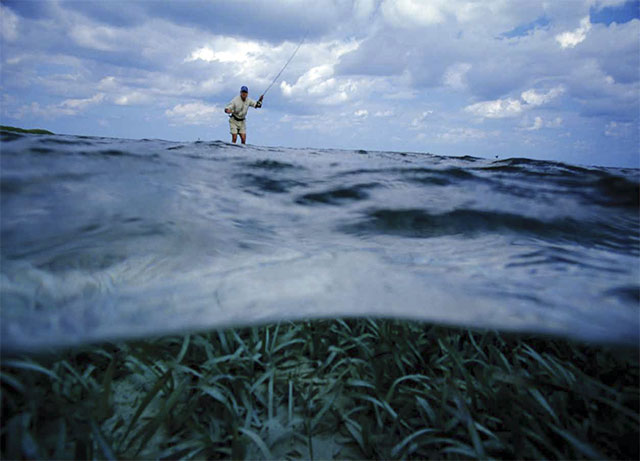 Fly Fishing Saltwater Wading