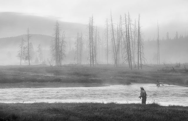 Fly fishing in Yellowstone National Park Madison River