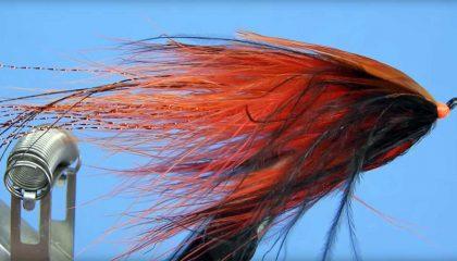 How to Tie a Bleeding Prawn (Stormy Evening) Steelhead Fly