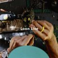 Join Loon Live on January 3
