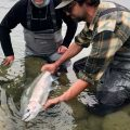 Tippets: Photographing Winter Steelhead, Interview with Camille Egdorf
