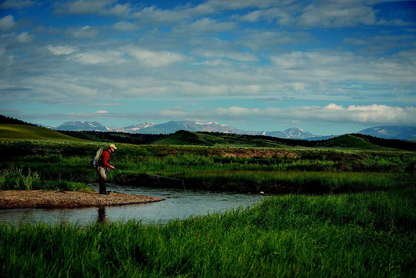 Fly Fishing Colorado's South Platte River Pat Dorsey