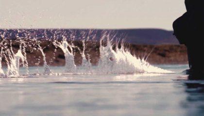 Atlantic Steelhead - Santa Cruz River   Argentina