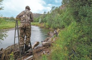How to Elevate Your Fly Fishing Game