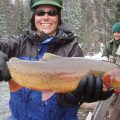 Broad Impacts of Lake Trout in Yellowstone