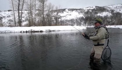Streamer Fishing with a Euro Nymphing Rig