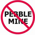 Take Action: Comments Needed to Stop Pebble Mine