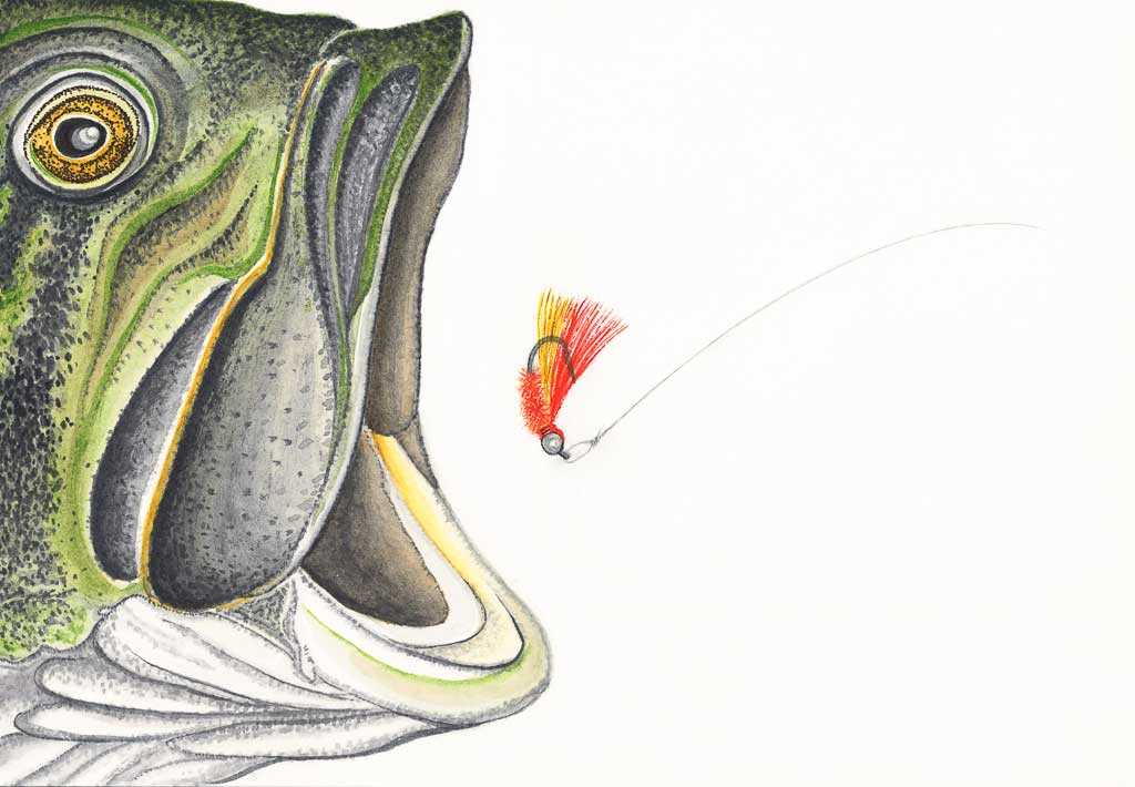 Largemouth Bass Flies