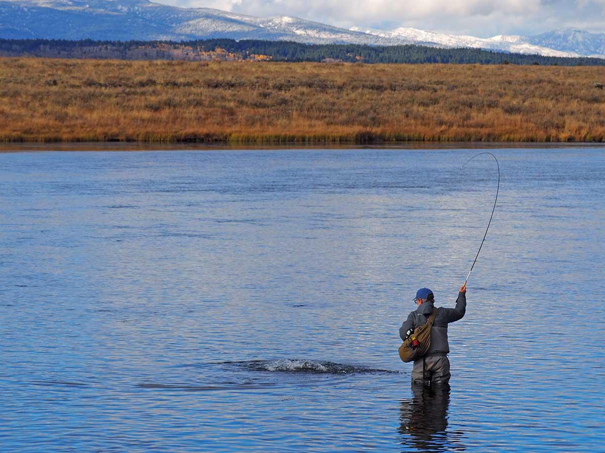 Tom Rosenbauer fly fishing School of Trouit