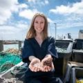 How Fish Skins Could Lower Plastics Pollution