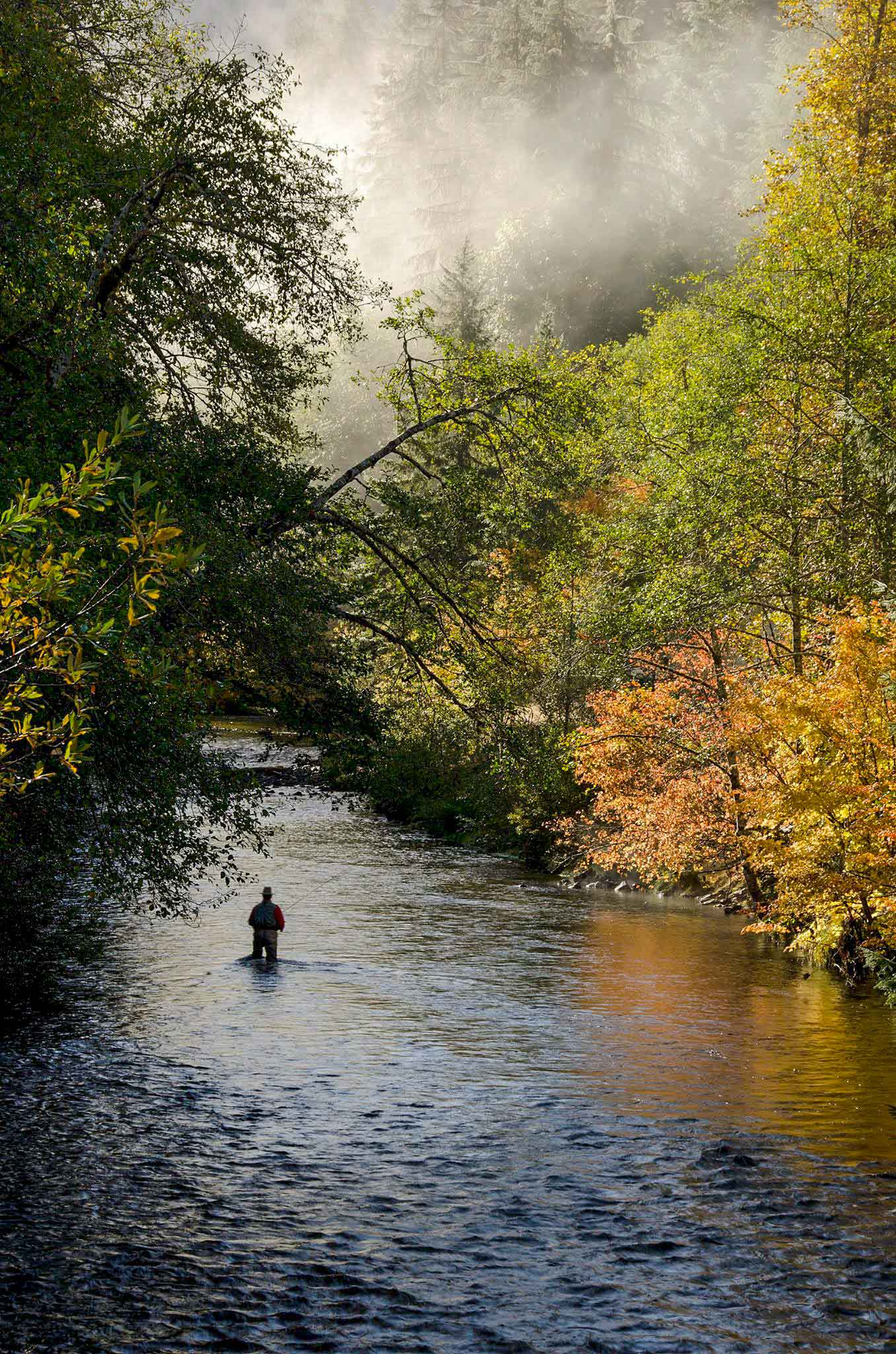 Fly Fishing in Old Age