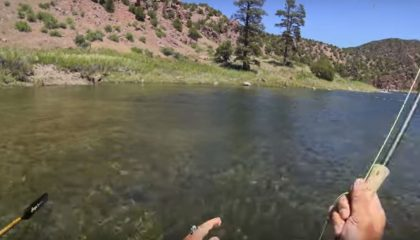 Fly Fishing the Green River, Utah