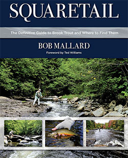 Bob Mallard Fly Fishing for Brook Trout