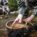 Complete Guide to Tenkara Fishing